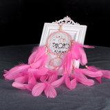 Dromenvanger pastel - Roze 11 x 55 cm / droomvanger voor kind of babykamer_